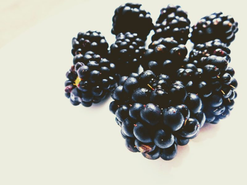 """#Ostružiny – černé perly z naší krajiny + recept na """"Blackberry Acai bowl"""""""